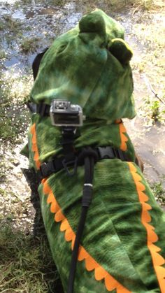 YappeeHour dog Jasper lurking in the swamps of Tucson Az with his GoPro waiting for an unwary chicken to cross the road (swamp), to have it over for lunch.  Or to just enjoy the view at Dogtoberfest 2014 in costume with cam.