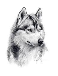 Afbeeldingsresultaat voor husky tattoo