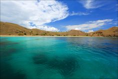 Komodo Nathional Marine Park, Indonesia. There is amazing diving guys