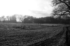 Landscape Twente Holland