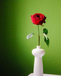 Mal wieder ein opulenter Gartenstrauß. Aber im Moment schauen wir uns die vielen Blumen ja auch lieber draußen an... Ikebana, Amaryllis, Moment, Home Decor, Lilac Bushes, Tulips, Decorating Ideas, Creative, Cut Flowers