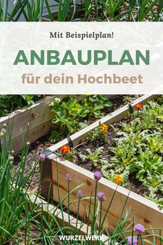Hochbeet bepflanzen in 6 Schritten (  Beispielplan) - Du hast ein Hochbeet im Garten und fragst dich wie man es richtig befüllt bzw. richtig bepflanzt? In meinem Artikel erkläre ich dir, welche Gemüse man im 1. und 2. Jahr pflanzen kann (v.a. Starkzehrer wie Tomaten, Zucchini oder Kartoffeln), wie du einen Anbauplan/Jahresplan erstellst, wie du ein Hochbeet düngst so wie viele weitere Tipps für eine große Ernte im Gemüsegarten oder auf dem Balkon! #Hochbeet #Selbstversorgung #Wurzelwerk Signs, Sweet Home, Outdoor Structures, Plants, Anna, Gardening, Vegetable Gardening, Planting Fruit Trees, Planting