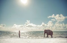 walking on the beach with an elephant .. my bucket list ..trust