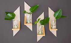 Easy-to-Make Wooden Projects