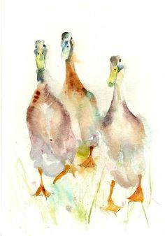 Original watercolour painting 'Indian Runner Ducks'