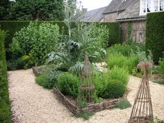 Here a large cardoon (Cynara cardunculus) becomes the focal point of this bed edged in willow hurdles and surrounded with gravel.