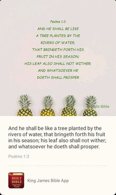 Holy Bible King James, Bible App, Fruit Water, Trees To Plant, Psalms, Tree Planting, Fruit Infused Water