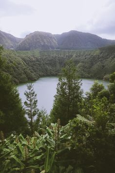 São Miguel, Azores – the hidden treasure of the Atlantic — Madalena Travels Sao Miguel Azores, River, Day, Outdoor, Saint Michael, The Great Outdoors, Rivers, Outdoors