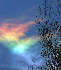 circumhorizontal arc / circumhorizon arc (CHA) /fire rainbow, Ravenna, Michiga