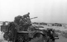 A SdKfz 10/4 with 2 cm Flak gun North Africa,1941