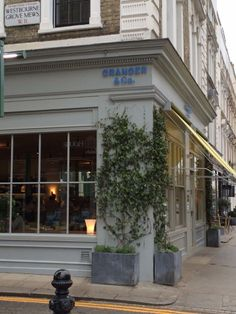 """See 1251 photos from 6628 visitors about breakfast food, pancakes, and lively. """"This is now one of my fav breakfast spots in london loved the. Granger And Co, Greater London, Cafe Restaurant, Restaurants, Planters, Shop, Travel, Houses, Viajes"""