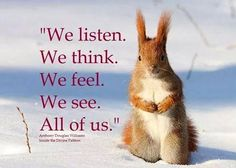 Some People Don't Understand Why I Talk To Other Animals. That's Okay, The Animals Understand ~ Anthony Douglas Williams All Animals Are Equal, Albert Schweitzer, Respect Life, People Dont Understand, Why Vegan, Pet Life, All Gods Creatures, Animal Quotes, Nature Animals