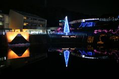 光のページェント~TWINKLE JOYO 2013~ / 城陽市総合運動公園 light pageant -TWINKLE JOYO 2013- / Joyo City general exercise park