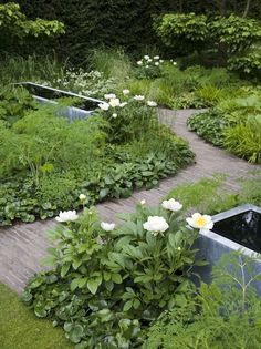 Chelsea 2008 | Tom Stuart-Smith, the meandering path creates a cottage like whimsical, relaxed feel. Tranquility is also provided by the matching water features. water elements, pond, pathway