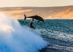 Surfing with a dolphin.