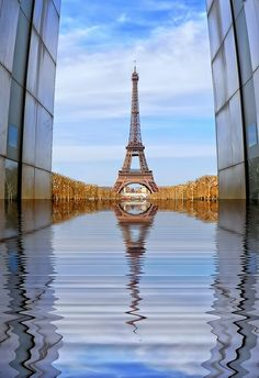 Paris reflection