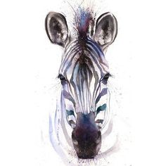 WATERCOLOR ZEBRA PRINT zebra art print, zebra painting, zebra wall... ❤ liked on Polyvore featuring home, home decor, wall art, water color painting, pink home decor, pink zebra home decor, watercolor painting and watercolour painting