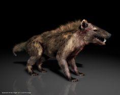 Hyaenodon | Hyaenodon, Hyaenodon - 3D-Ring.de