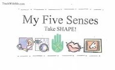 5 senses, science 5 senses, teaching the five senses, five senses activities, five senses lessons,