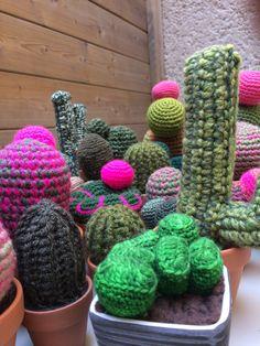 Crochet cactus by Señorita Crochet