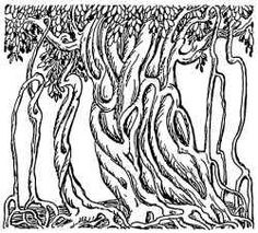 Coloring Pages Of Trees Plants And Flowers - Coloring Pages For ...