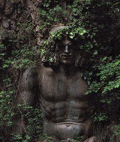 Druids Trees:  Forest spirit.