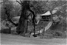 Bridge over gully leading to house.. From Duke Digital Collections. Collection: William Gedney Photographs and Writings. Mark: Stamp. Date of print: Unknown.