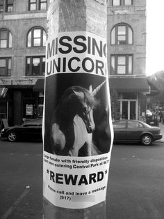 """:D I've seen a notice like this in Brno, Czech Republic, going """"If you've seen this unicorn - stop doing drugs""""."""