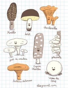 Elise Gravel • Edible mushrooms • Champignons comestibles