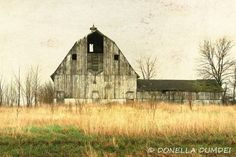 abandoned barns | Abandoned Barn Photo 8 x 12 Photography by PhotographybyTess, $27.00