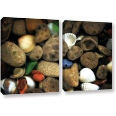 ArtWall Kevin Calkins Petoskey Stone Collage Iii 2-Piece Gallery-Wrapped Canvas Set, Size: 24 x 36, Brown