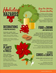 Pet Safety: Holiday Hazards for Dogs #PoochPawty