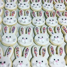 Hosting a Cookie Decorating Party (Easter Cookies) - Cupcakes Sprinkle Cookies, Cookies Cupcake, Easter Cupcakes, Iced Cookies, Cut Out Cookies, Cute Cookies, Easter Cookies, Royal Icing Cookies, Holiday Cookies