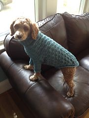 Ravelry: Perfect Fit Dog & Cat Sweater (Pattern Generator, Top-Down) pattern by Jessika Lane