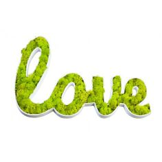 'Love' Wall Frame With Preserved Lichen - contemporary - Artwork - flowerboxnature guaranteed to last 5 years Living Wall Planter, Wall Planters, Moss Graffiti, Wall Logo, Growing Plants Indoors, Moss Art, Deco Floral, Love Wall, How To Preserve Flowers