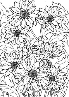 Chrysanthemum, : Chrysanthemum for the Love One Coloring Page