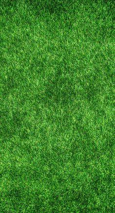 Grass, Green, Lawn | Photo Grass Photoshop, Texture Photoshop, Green Grass Background, Textured Background, Natural Background, Party Background, Live Wallpapers, Wallpaper Backgrounds, Iphone Wallpapers
