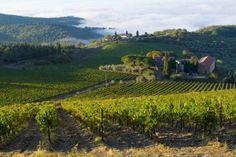 """Diep verscholen in de groene Apennijnen, ten noordoosten van Florence, ligt de Antico Borgo """"I Cancelli"""". Hoog op een heuvel heb je vooral een magnifiek uitzicht op het bosrijke heuvellandschap van Toscane. via effefoetsie.nl"""