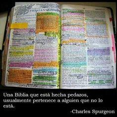 ¿Cual es el estado de nuestra biblia?