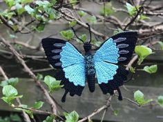 Amigurumipatterns.net has the biggest collection of Amigurumi patterns. Click and discover Papilio ulysses butterfly !