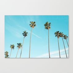 Buy Palm Tree Sunshine Canvas Print by nauticaldecor. Worldwide shipping available at Society6.com. Just one of millions of high quality products available.