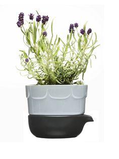 Herb Pot by Sagaform