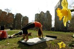 outdoor yoga and daffodils