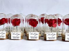 Wedding favors for guests Wedding favors Favors Dome Rose Dome, Baptism Favors, Wedding Favors For Guests, Personalized Favors, Personalized Wedding, Fake Flowers, Quinceanera, Beauty And The Beast, Sweet 16