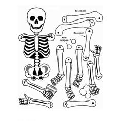 this could be a fun project for the kids!Skeletal printout via @kids-n-fun #Halloween #crafts #DIY #kids