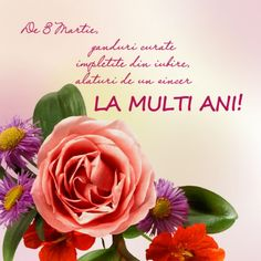 8 Mars, Super 8 Film, French Flowers, 8th Of March, Nail Designs, Birthdays, Happy Birthday, Plants, Martie