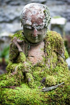 Little Buddha statue at Okunoin, Koyasan, Wakayama, Japan places-spaces-i-long-to-be-at Wakayama, Moss Garden, Garden Art, Mini Jardin Zen, Bonsai, Little Buddha, Paludarium, Garden Statues, Wabi Sabi