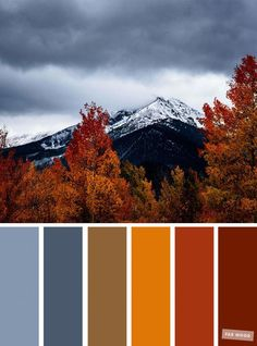 59 Pretty Autumn Color Schemes { Smokey + Orange } - - Pretty Autumn Color Schemes { Smokey + Orange } A pretty colour palette of blue and yellow. To get you started on your own palette,. Fall Color Schemes, Color Schemes Colour Palettes, Blue Colour Palette, Color Combos, Autumn Color Palette, Rustic Color Schemes, Rustic Color Palettes, Orange Color Schemes, Seeds Color Palettes