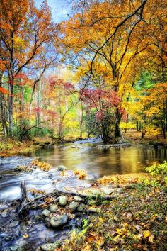 Fall in the Smoky Mountains: