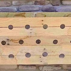 She Drills 19 Holes In A Wooden Planter Box. 5 Months Later? Unbelievable!